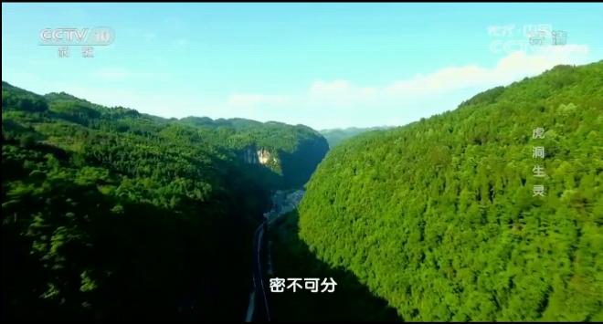 《地理中国》湘西秘境·虎洞生灵